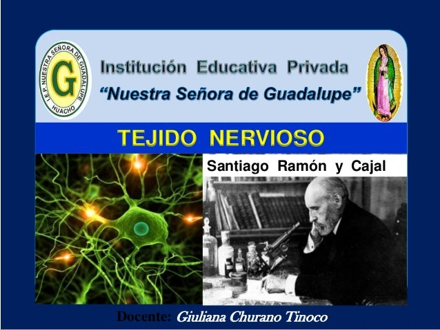 Docente: Giuliana Churano Tinoco TEJIDO NERVIOSO Santiago Ramón y Cajal