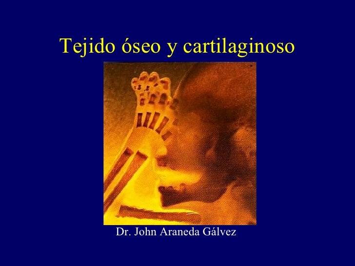 Tejido óseo y cartilaginoso Dr. John Araneda Gálvez