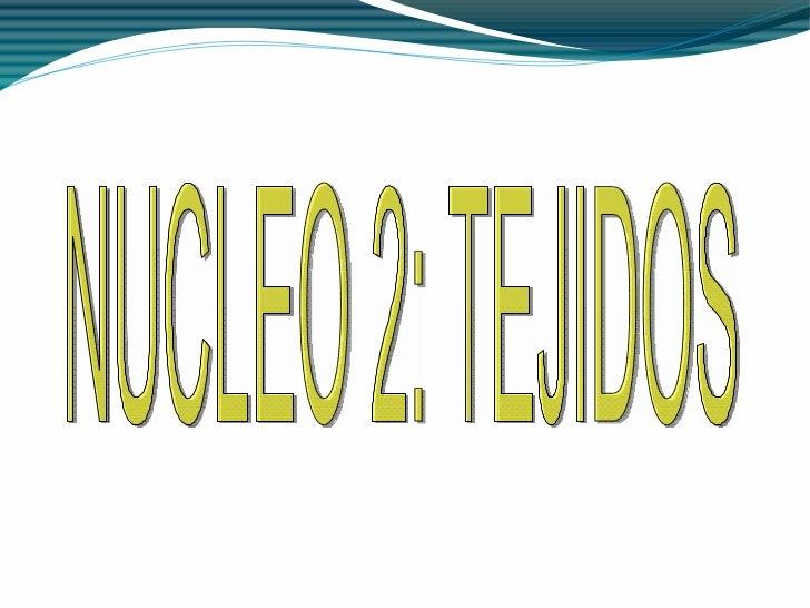 Vertical estrecha NUCLEO 2: TEJIDOS