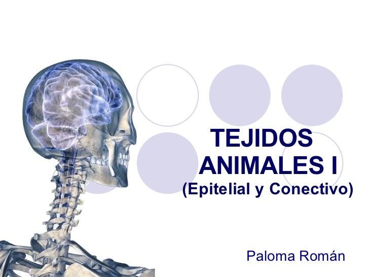 TEJIDOS  ANIMALES I (Epitelial y Conectivo) Paloma Román