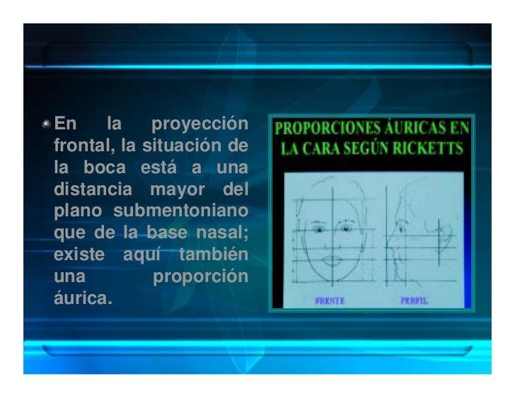 En    la     proyección frontal, la situación de la boca está a una distancia mayor del plano submentoniano que de la base...