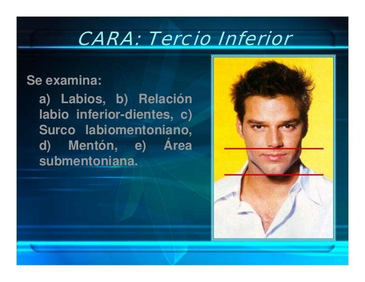 CARA: Tercio Inferior  Se examina:   a) Labios, b) Relación   labio inferior-dientes, c)   Surco labiomentoniano,   d) Men...