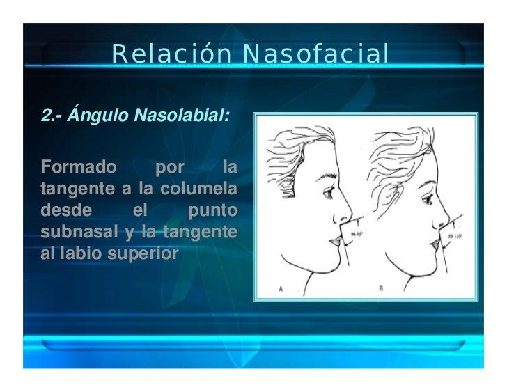 Relación Nasofacial  2.- Ángulo Nasolabial:  Formado       por    la tangente a la columela desde      el     punto subnas...