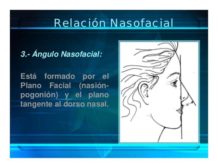 Relación Nasofacial  3.- Ángulo Nasofacial:  Está formado por el Plano Facial (nasión- pogonión) y el plano tangente al do...