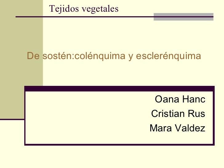 Tejidos vegetales De sostén:colénquima y esclerénquima Oana Hanc Cristian Rus Mara Valdez