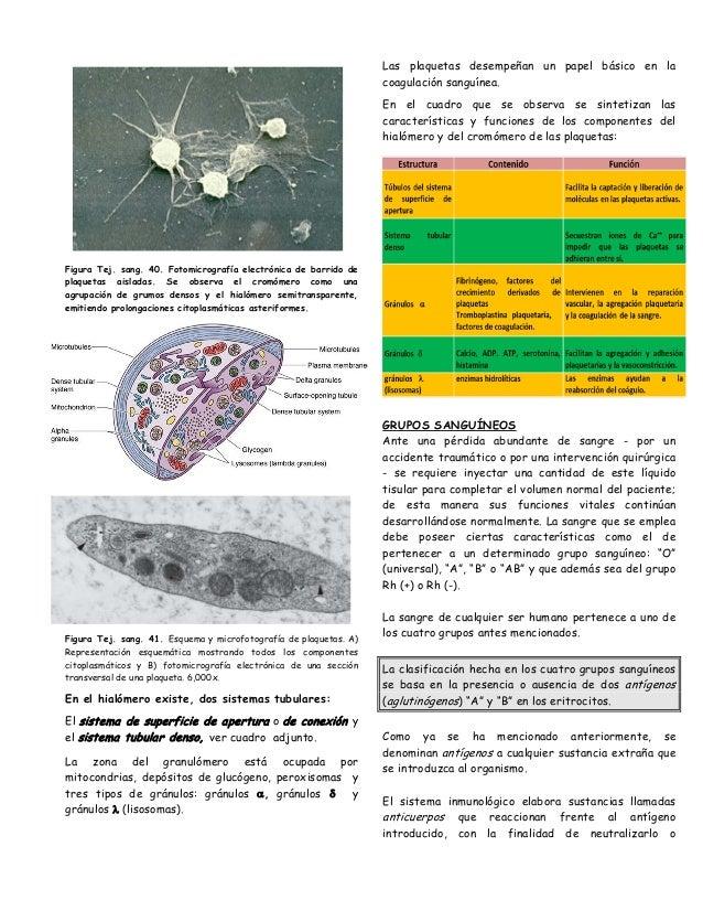 aceite malo acido urico bicarbonato de sodio para bajar el acido urico cura para el acido urico