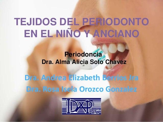 TEJIDOS DEL PERIODONTO EN EL NIÑO Y ANCIANO Dra. Andrea Elizabeth Berrios Jra Dra. Rosa Isela Orozco Gonzalez Periodoncia ...