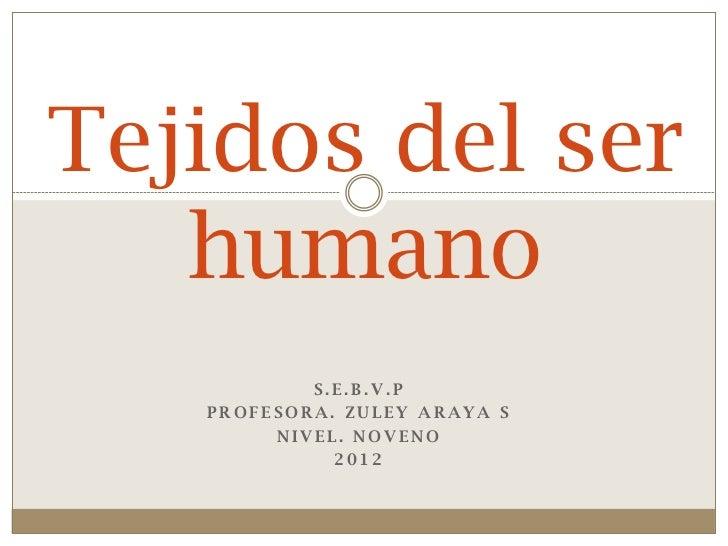 Tejidos del ser   humano           S.E.B.V.P   PROFESORA. ZULEY ARAYA S        NIVEL. NOVENO             2012