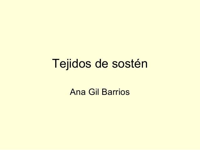 Tejidos de sostén Ana Gil Barrios