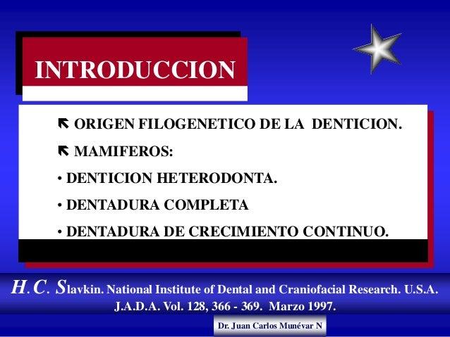 Dr. Juan Carlos Munévar N INTRODUCCION  ORIGEN FILOGENETICO DE LA DENTICION.  MAMIFEROS: • DENTICION HETERODONTA. • DENT...
