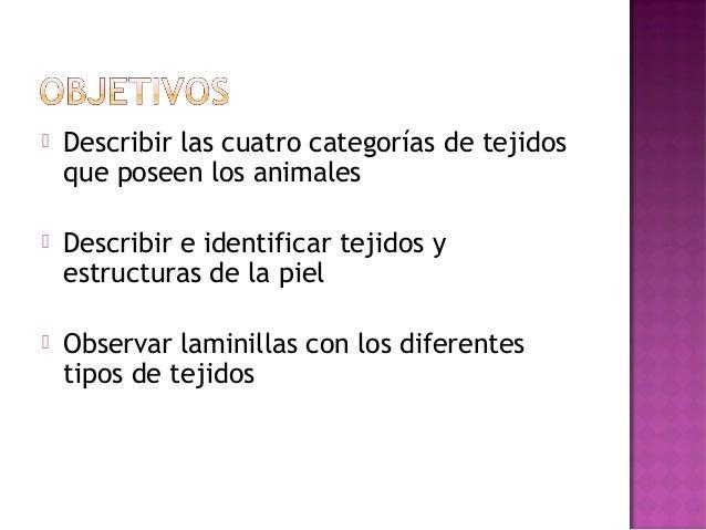    Describir las cuatro categorías de tejidos    que poseen los animales   Describir e identificar tejidos y    estructu...