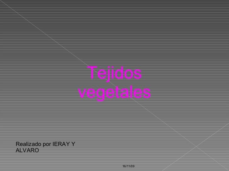 16/11/09 Tejidos vegetales Realizado por IERAY Y ALVARO
