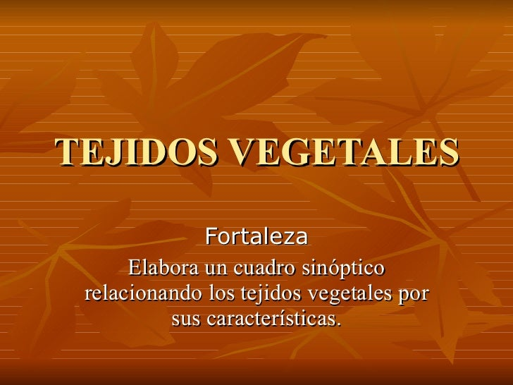 TEJIDOS VEGETALES Fortaleza Elabora un cuadro sinóptico relacionando los tejidos vegetales por sus características.