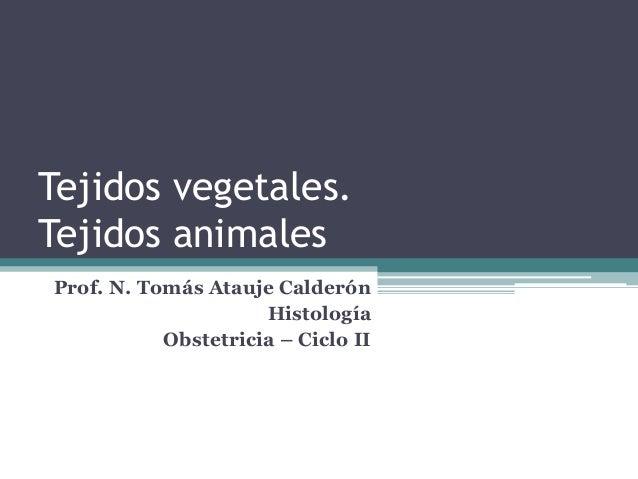Tejidos vegetales. Tejidos animales Prof. N. Tomás Atauje Calderón Histología Obstetricia – Ciclo II