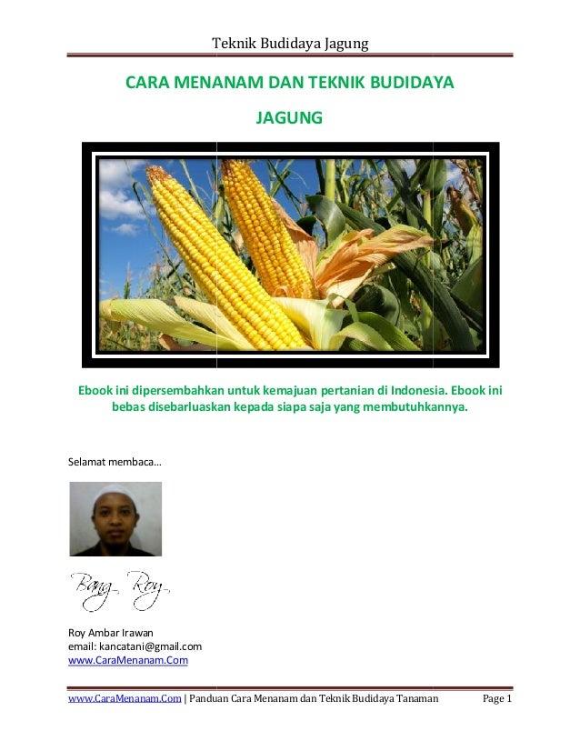 Teknik Budidaya Jagung www.CaraMenanam.Com | Panduan CARA MENANAM DAN TEKNIK BUDIDAYA Ebook ini dipersembahkan untuk kemaj...