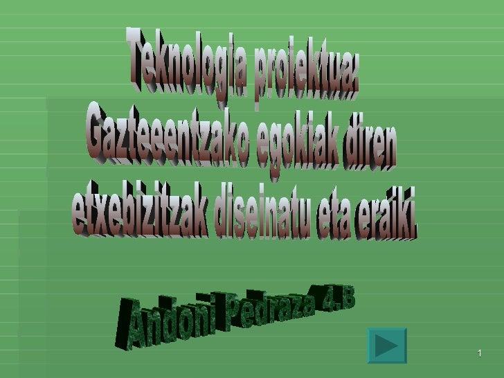 Teknologia proiektua: Gazteeentzako egokiak diren etxebizitzak diseinatu eta eraiki. Andoni Pedraza 4.B