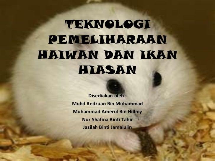 TEKNOLOGI PEMELIHARAAN HAIWAN DAN IKAN HIASAN Disediakan oleh : Muhd Redzuan Bin Muhammad Muhammad Amerul Bin Hillmy Nur S...