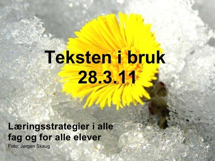 Teksten i bruk  28.3.11 Læringsstrategier i alle fag og for alle elever Foto: Jørgen Skaug Marthe Moe - Pedagogisk senter ...