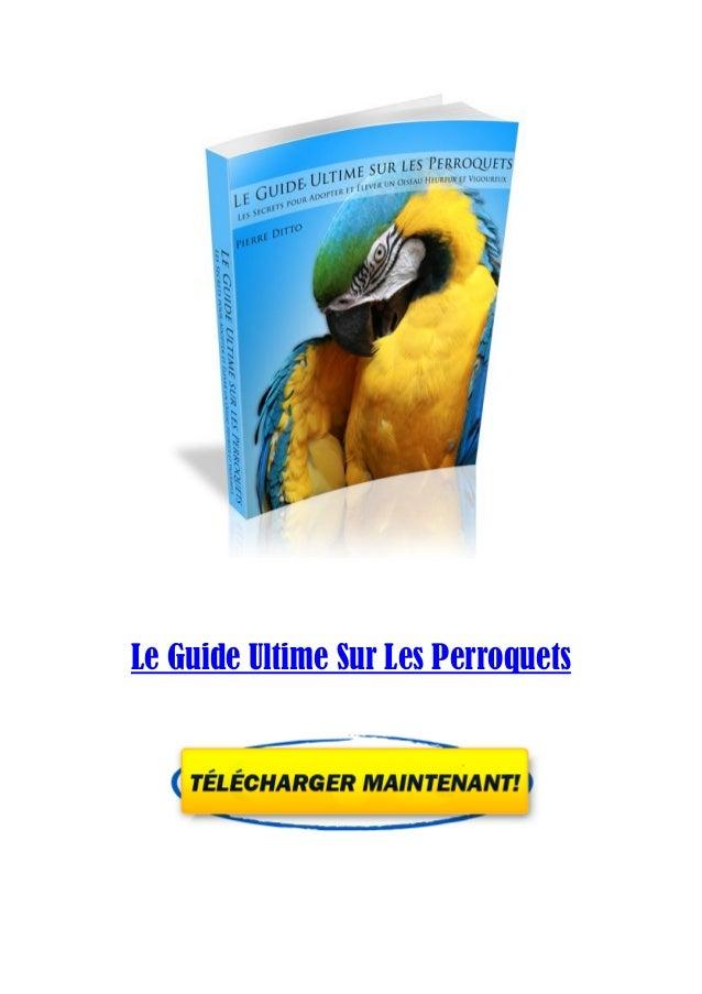 Le Guide Ultime Sur Les Perroquets