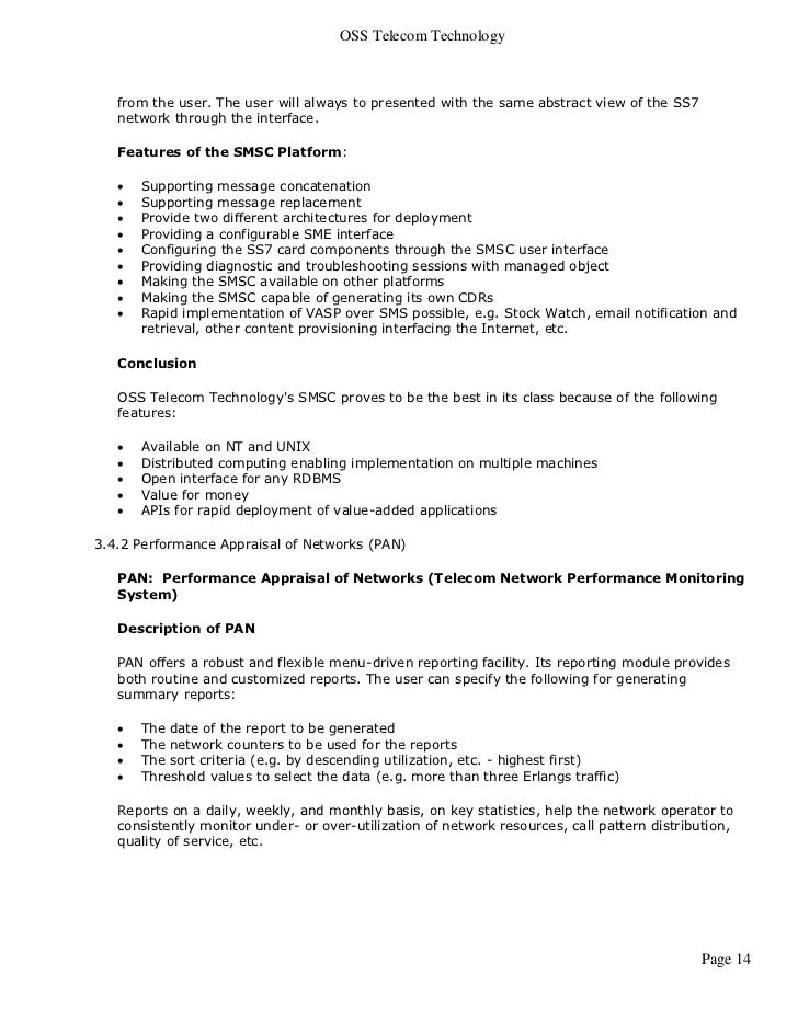 technical report sample business plan