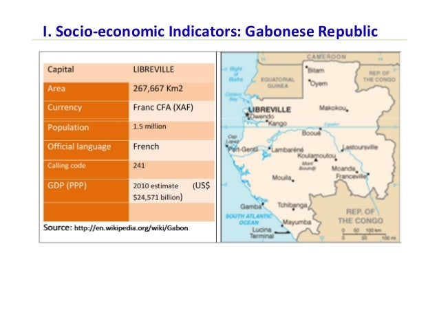 Telecom policy and regulation for next generation networks gabon i socio economic indicators gabonese republic sciox Gallery