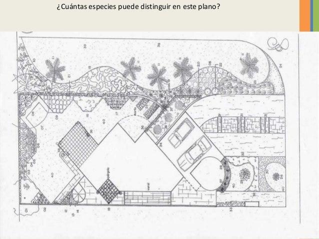 graficacin elementos en diseo de jardines cuntas especies puede distinguir en este plano