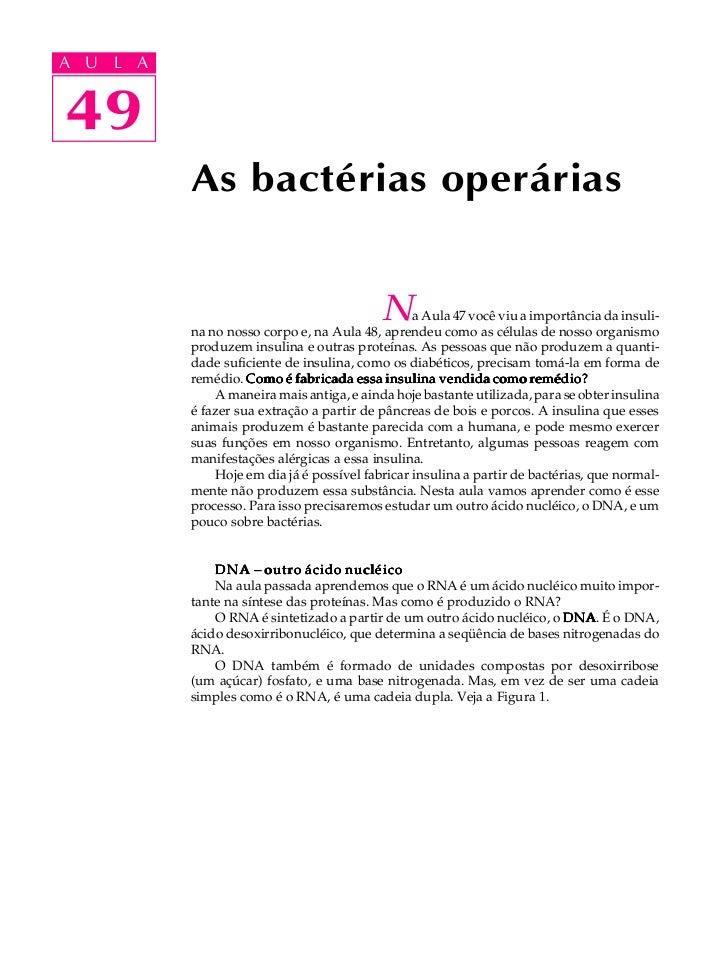 A UA U L A     L A    4949             As bactérias operárias                                              N     a Aula 47...