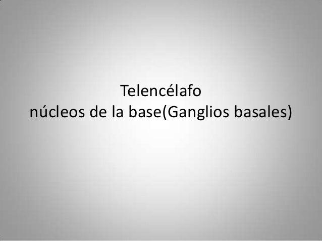 Telencélafonúcleos de la base(Ganglios basales)