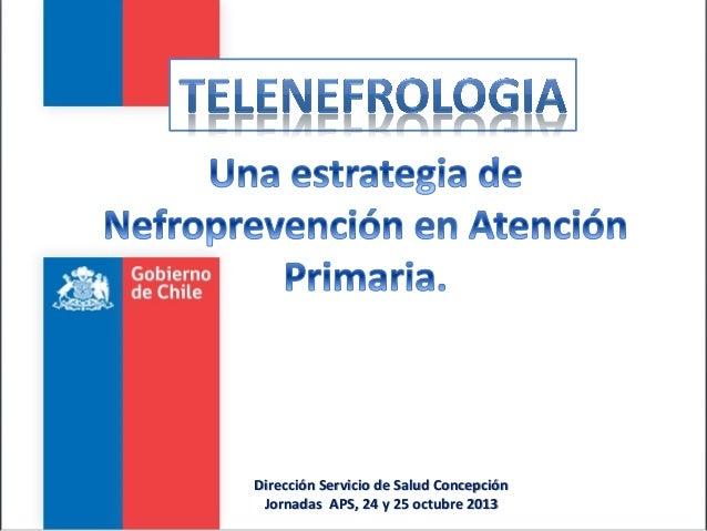 Dirección Servicio de Salud Concepción Jornadas APS, 24 y 25 octubre 2013