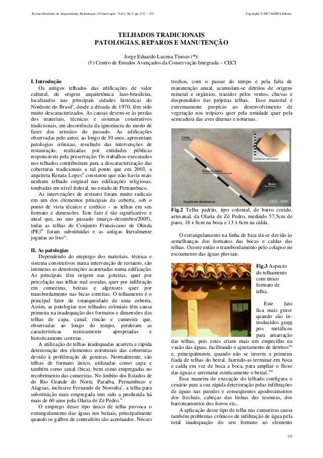 Revista Brasileira de Arqueometria, Restauração e Conservação. Vol.1, No.5, pp. 232 - 237  Copyright © 2007 AERPA Editora ...