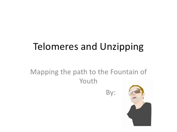 Telomeres and Unzipping  Mapping the path to the Fountain of               Youth                       By: