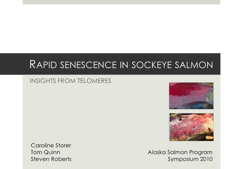 Rapid senescence in sockeye salmon<br />Insights from telomeres<br />Caroline Storer<br />Tom Quinn <br />Steven Roberts<b...