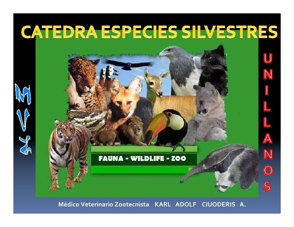 Médico Veterinario Zootecnista KARL ADOLF CIUODERIS A.