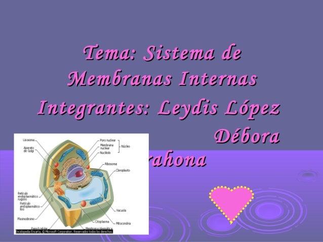 Tema: Sistema deTema: Sistema de Membranas InternasMembranas Internas Integrantes: Leydis LópezIntegrantes: Leydis López D...