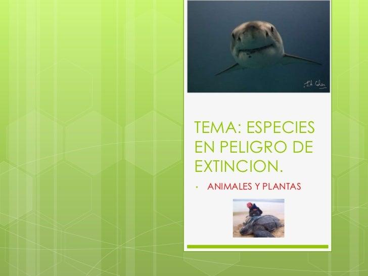 TEMA: ESPECIES EN PELIGRO DE EXTINCION.<br /><ul><li>ANIMALES Y PLANTAS</li></li></ul><li>DISCIPLINA: Ciencias Naturales<b...