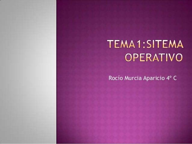 Rocío Murcia Aparicio 4º C