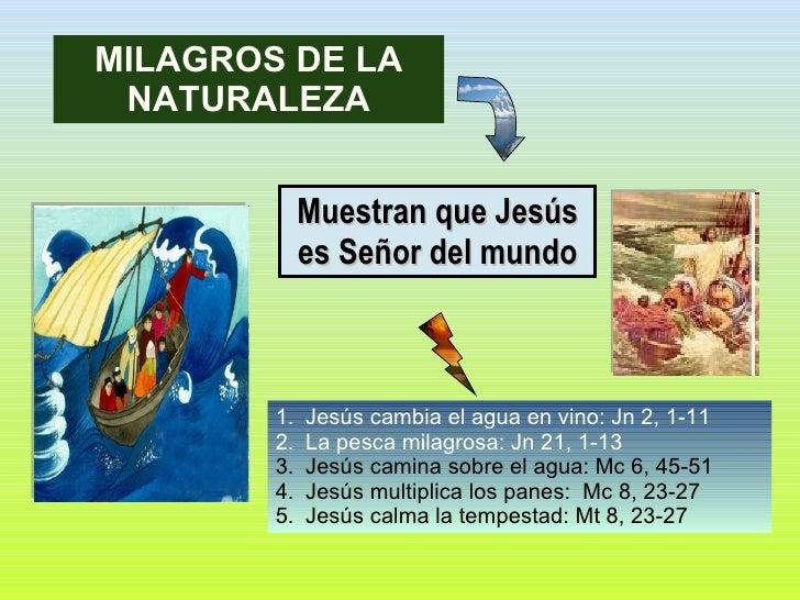 Muestran que Jesús es Señor del mundo <ul><li>Jesús cambia el agua en vino: Jn 2, 1-11 </li></ul><ul><li>La pesca milagros...
