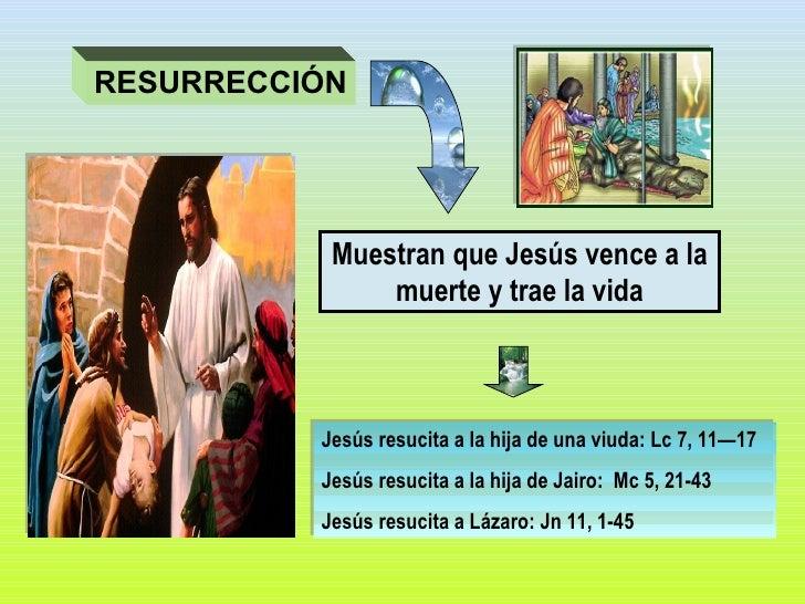 Muestran que Jesús vence a la muerte y trae la vida Jesús resucita a la hija de una viuda: Lc 7, 11—17 Jesús resucita a la...