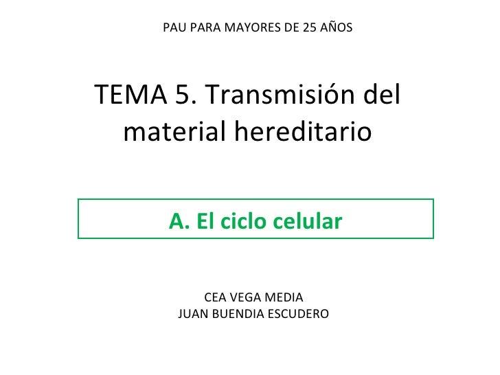 TEMA 5. Transmisión del material hereditario A. El ciclo celular PAU PARA MAYORES DE 25 AÑOS CEA VEGA MEDIA JUAN BUENDIA E...