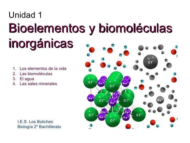 Unidad 1 Bioelementos y biomoléculas inorgánicas I.E.S. Los Boliches Biología 2º Bachillerato <ul><li>Los elementos de la ...