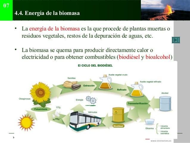 07      4.4. Energía de la biomasa      • La energía de la biomasa es la que procede de plantas muertas o        residuos ...
