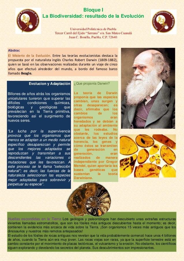 Bloque I                       La Biodiversidad: resultado de la Evolución                                          Univer...