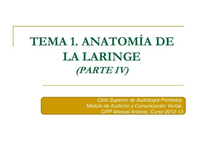 TEMA 1. ANATOMÍA DE  LA LARINGE  (PARTE IV)  Ciclo Superior de Audiología Protésica.  Módulo de Audición y Comunicación Ve...