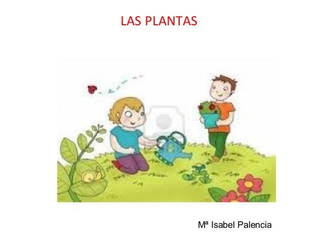 LAS PLANTAS Mª Isabel Palencia