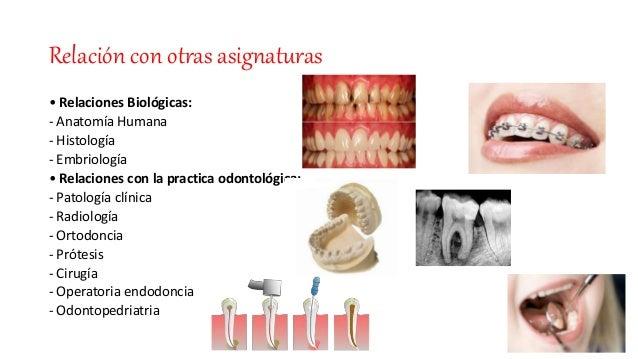 Tema 1. introducción a la anatomía dentaria