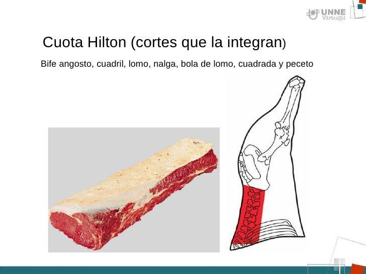 Resultado de imagen para cuota Hilton
