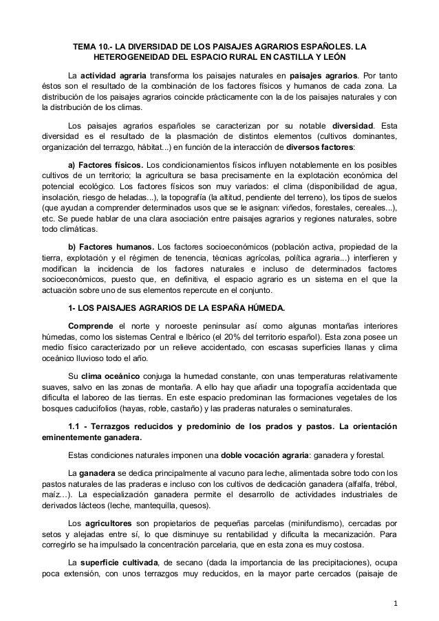 TEMA 10.- LA DIVERSIDAD DE LOS PAISAJES AGRARIOS ESPAÑOLES. LA HETEROGENEIDAD DEL ESPACIO RURAL EN CASTILLA Y LEÓN La acti...