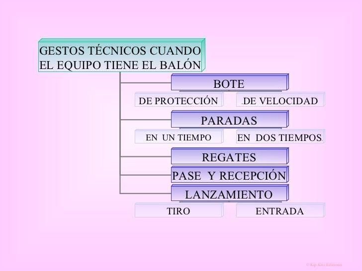 GESTOS TÉCNICOS CUANDO EL EQUIPO TIENE EL BALÓN BOTE PARADAS REGATES PASE  Y RECEPCIÓN LANZAMIENTO DE PROTECCIÓN D DE VELO...