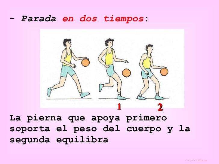 <ul><li>Parada  en dos tiempos :   La pierna que apoya primero soporta el peso del cuerpo y la segunda equilibra </li></ul...