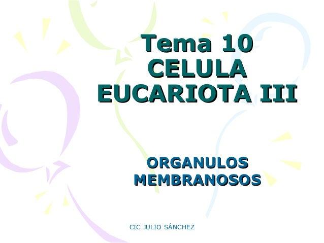 Tema 10 CELULA EUCARIOTA III ORGANULOS MEMBRANOSOS CIC JULIO SÁNCHEZ